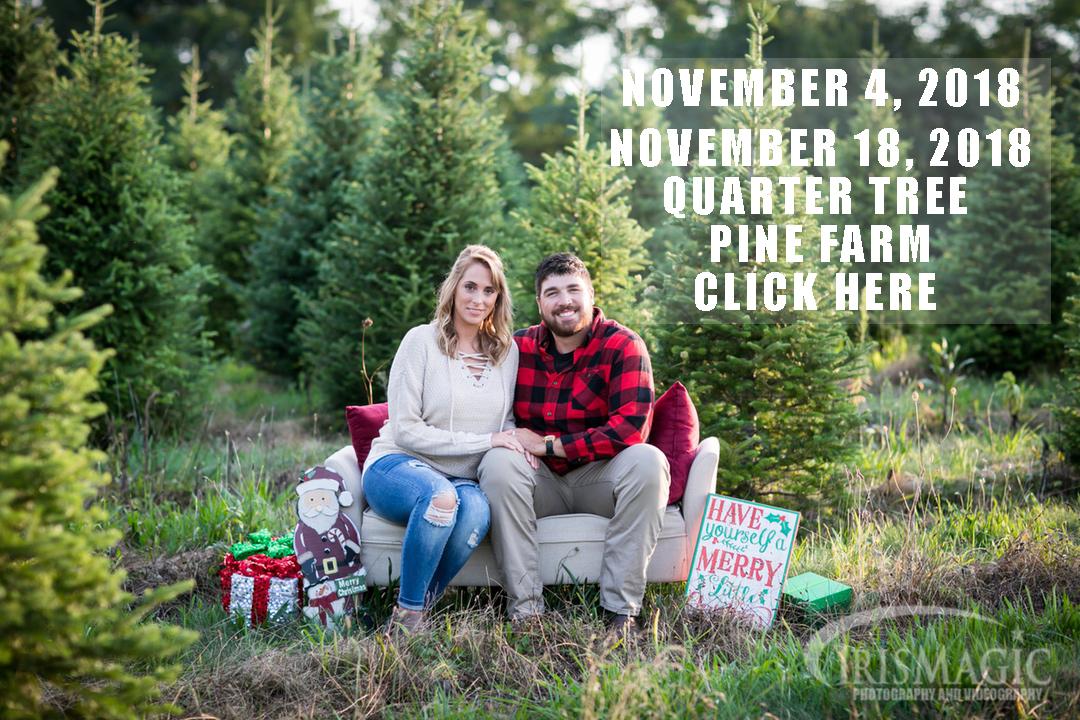 Quarter Tree Pine Farm Mini Sessions