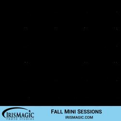 Fall Mini Session near me