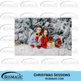 Top 5 Photography Christmas Session ideas