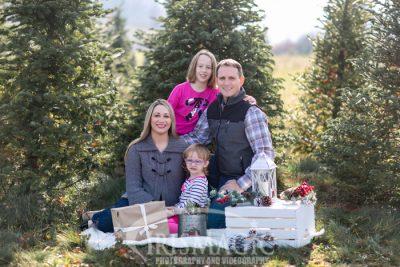 Pine Tree Farm Photos