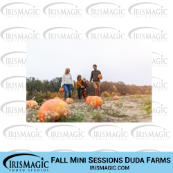 Limited Edition Fall Mini Sessions