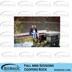 Coopers Rock State Forest Fall Mini Sessions